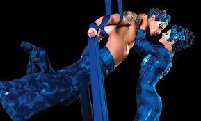 Cirque Silks